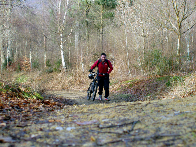 The Climb to Leith Hill